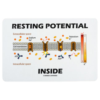 Resting Potential Inside Active Transport Humor Floor Mat