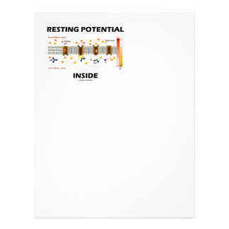 Resting Potential Inside (Na-K Active Transport) Letterhead