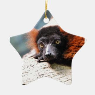Resting Red Ruffed Lemur Ceramic Ornament
