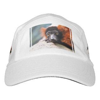 Resting Red Ruffed Lemur Hat