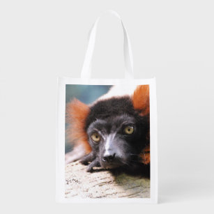 5689715bf37a Resting Red Ruffed Lemur Reusable Grocery Bag