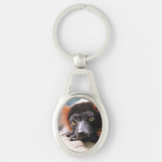 Resting Red Ruffed Lemur Silver-Colored Oval Metal Keychain