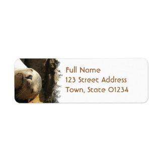 Resting Sea Lion Return Address Mailing Label Return Address Label
