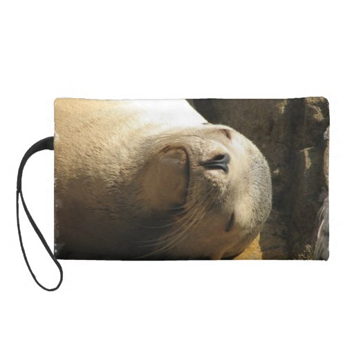 Resting Sea Lion Wristlet