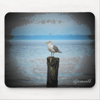 Resting Seagull by djoneill Mouse Pad