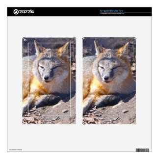 Resting Swift Fox & Forest Floor Wildlife Photo 2 Skin For Kindle Fire