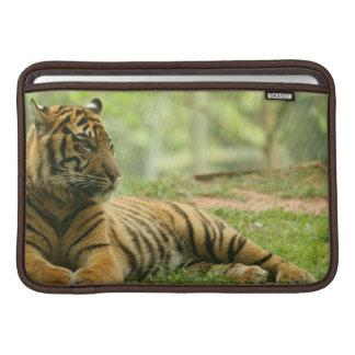 """Resting Tiger 11"""" MacBook Sleeve"""