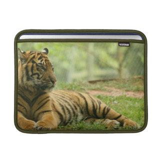 """Resting Tiger 13"""" MacBook Sleeve"""