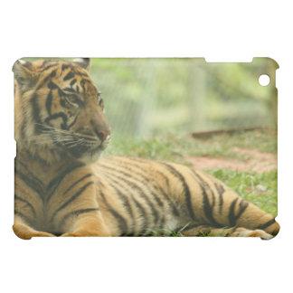 Resting Tiger iPad Case