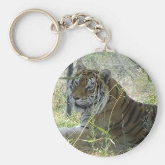Resting tiger keychain