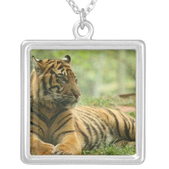 Resting Tiger  Necklace