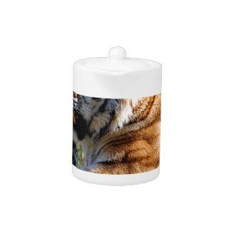 Resting Tiger Teapot