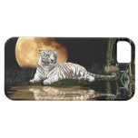 Resting White Tiger & Moon Big Cat Wildlife iPhone 5 Cover