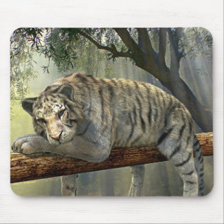 Resting White Tiger Mouse Pad