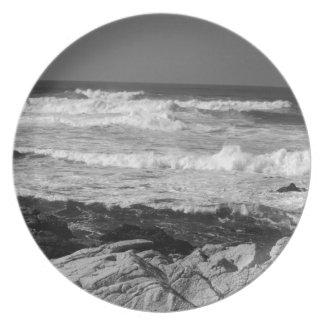 Restless Sea Melamine Plate