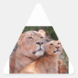 Resto de Cub de la leona y de león antes de la Colcomanias Trianguladas Personalizadas