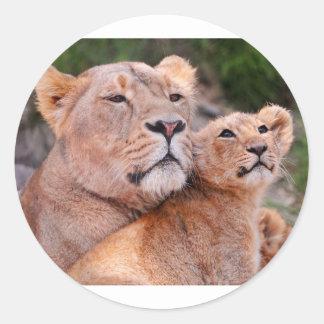Resto de Cub de la leona y de león antes de la Etiquetas Redondas