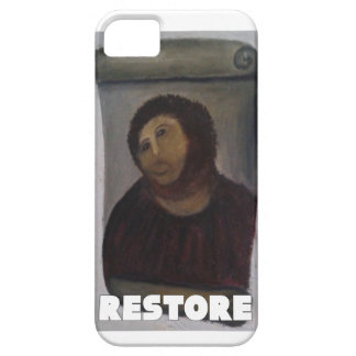 RESTORE 1 iPhone 5 COVERS