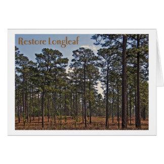 Restore Longleaf Card