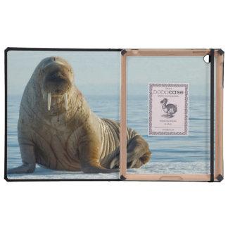 Restos de la morsa en el hielo marino del verano iPad funda