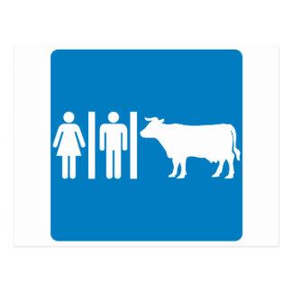 Restroom Facilities Humorous Highway Sign - COWS Postcards