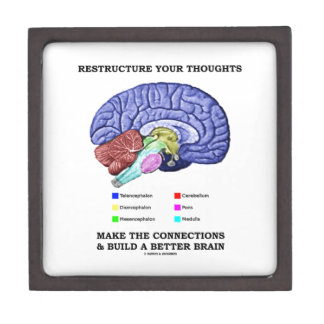 Restructure Your Thoughts Make The Connections Gift Box