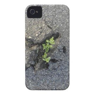 Resuelto Case-Mate iPhone 4 Coberturas