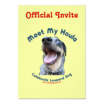 Resuelva mi perro de Catahoula Invitación Personalizada