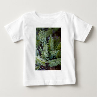 Resurrection Fern - Polypodium polypodioides Baby T-Shirt