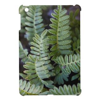 Resurrection Fern - Polypodium polypodioides iPad Mini Case