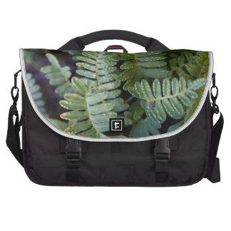 Resurrection Fern - Polypodium polypodioides Bag For Laptop