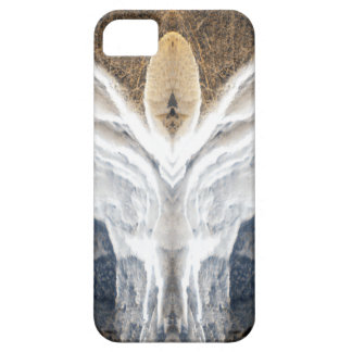 Resurrection iPhone 5 Cover