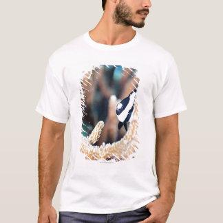 Reticulate dascyllus T-Shirt