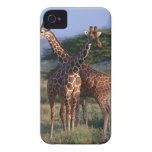 Reticulated Giraffe 2 Case-Mate iPhone 4 Case