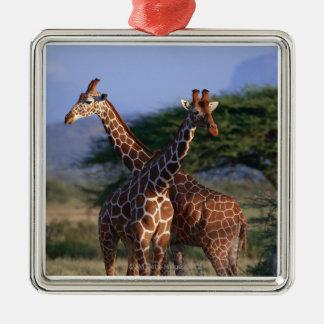 Reticulated Giraffe 2 Metal Ornament