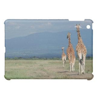 Reticulated Giraffe (Giraffa camelopardalis) 2 iPad Mini Cases
