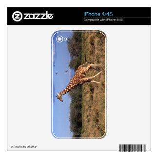 Reticulated Giraffe Skins For The iPhone 4S