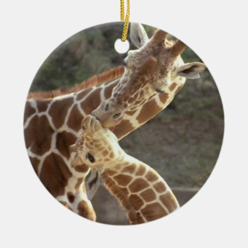 reticulated giraffes christmas ornaments