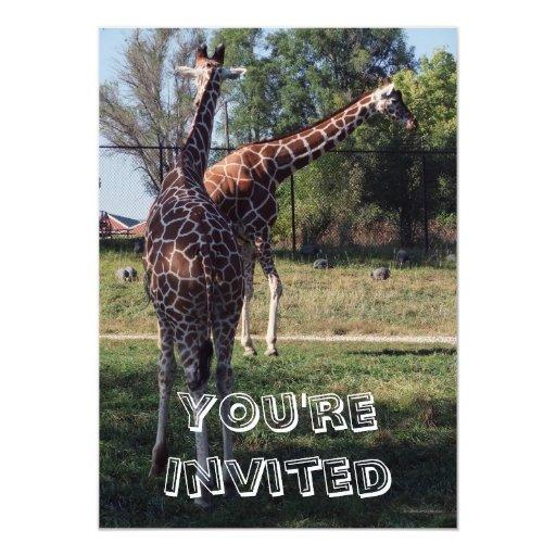 Reticulated Giraffes Kids Birthday Party Invites