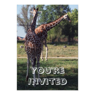 Reticulated Giraffes Kids Birthday Party Invites