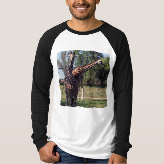 Reticulated Giraffes Long Sleeve Raglan Tee