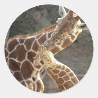 reticulated giraffes classic round sticker