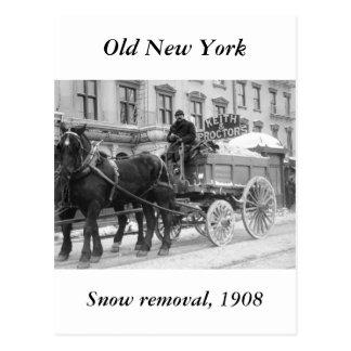 Retirada de la nieve 1908 postales