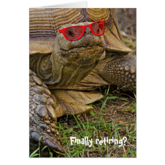 Retirement old tortoise in red sunglasses card