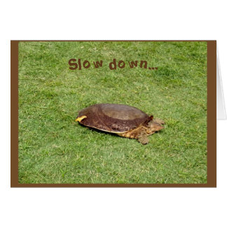 Retirement - Slow Down Turtle on Golf Course Card