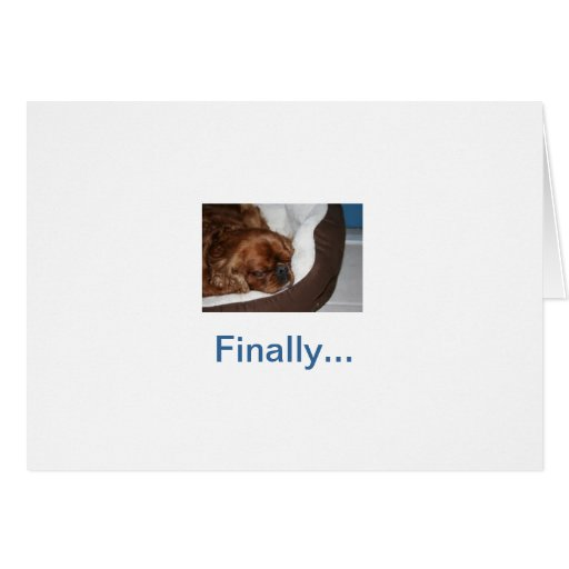 Retiro tonto del perro felicitacion