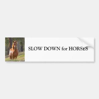 Retraso del caballo para la pegatina para el parac pegatina para auto