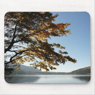 Retratamiento del lago autumn alfombrilla de ratones