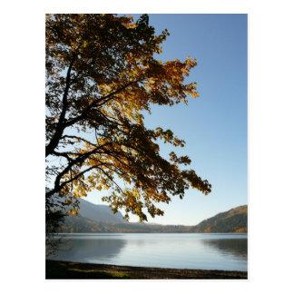 Retratamiento del lago autumn tarjetas postales