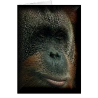Retrato #2 del orangután - el pensamiento en blanc felicitación